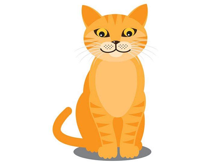 Was eine Katze als Symbol im Selbsttest darstellt.