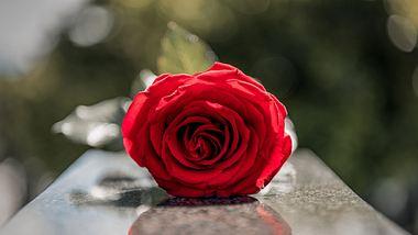 Eine Trauerfeier planen.  - Foto: RealPeopleGroup / iStock