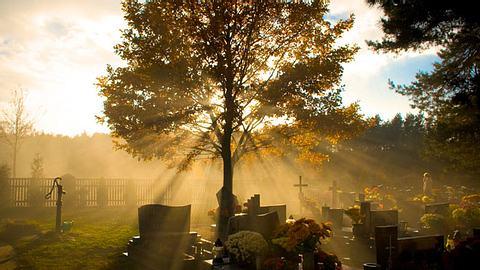 Mittlerweile gibt es immer mehr alternative Bestattungsmöglichkeiten. - Foto: LeNico / iStock