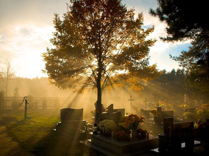 Mittlerweile gibt es immer mehr alternative Bestattungsmöglichkeiten.