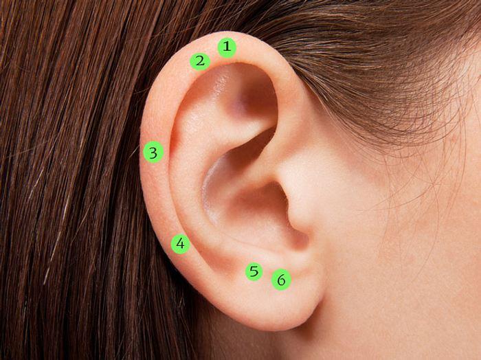 Akupunkturpunkte Ohr abnehmen