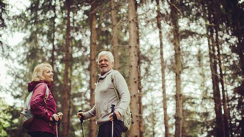 10 Gründe: Warum ein Waldspaziergang so gesund ist - Foto: AleksandarNakic/ iStock