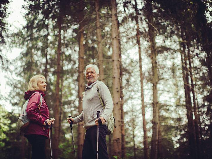 10 Gründe: Warum ein Waldspaziergang so gesund ist