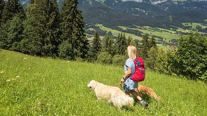 Wandern mit Hund: 10 Dinge, die Sie beachten sollten