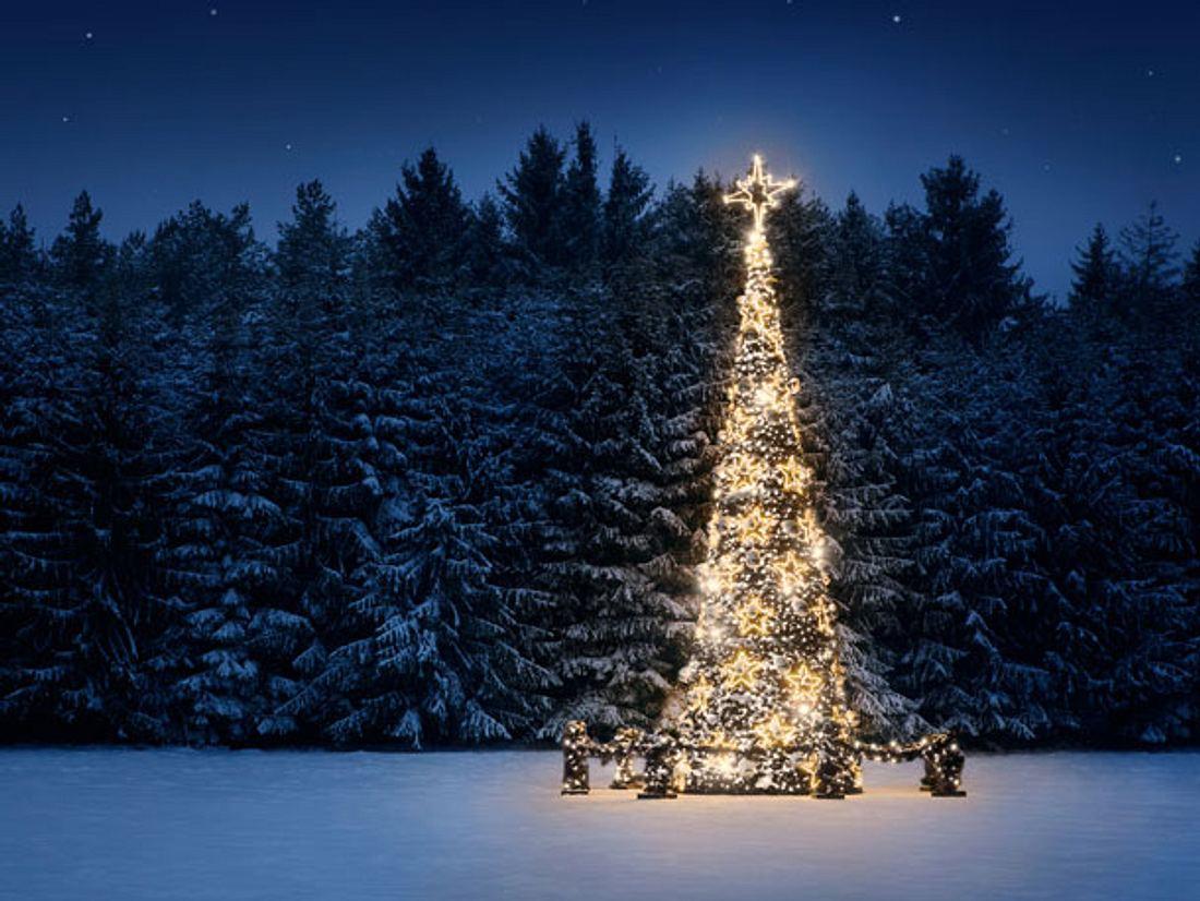 Weihnachtsbräuche rund um die Welt.