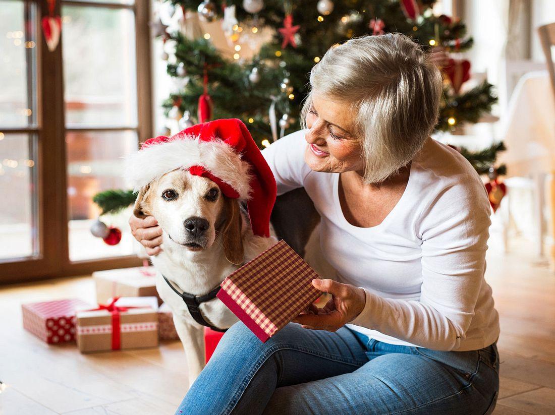 Die besten Weihnachtsgeschenke für Hunde