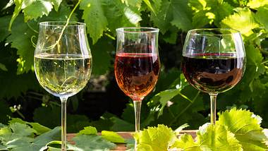 Verschiedene Weinsorten.  - Foto: Togapix / iStock