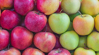 Welche Äpfel eignen sich wofür?