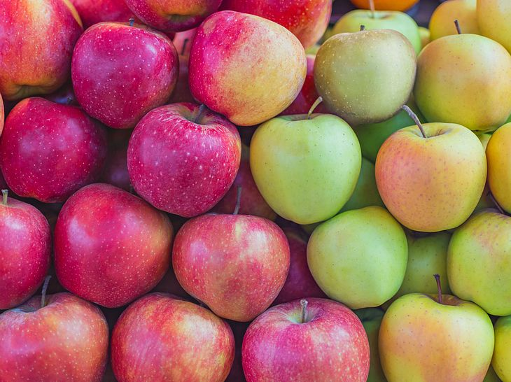 Verschiedene Apfelsorten, rote und grüne Äpfel
