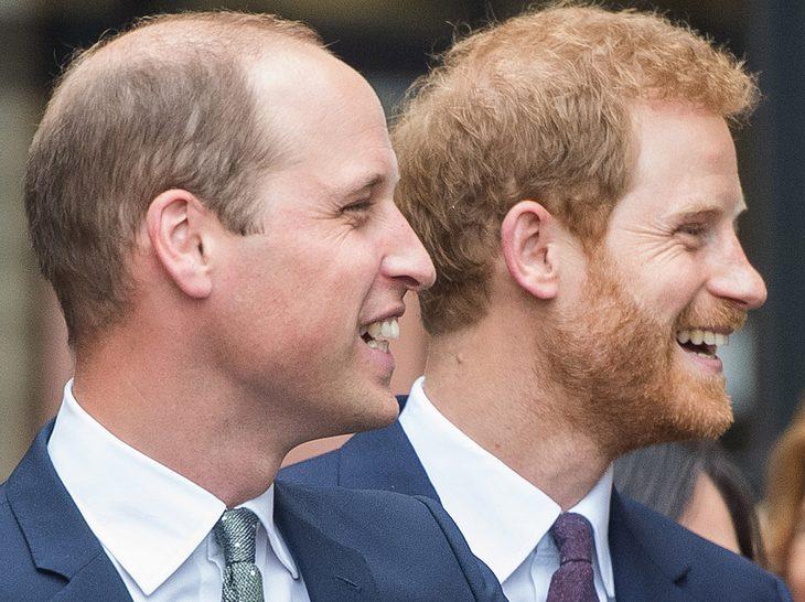 So lustig reagiert Prinz William auf Harrys Verlobung