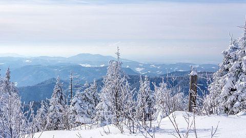 So schön ist ein Winterurlaub im Sauerland - Foto: MissPassionPhotography/iStock