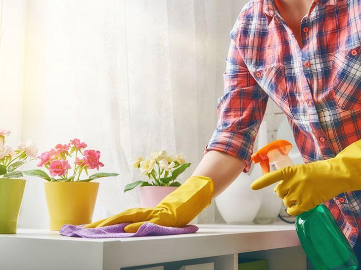 Wenn das Wetter endlich wärmer und sonniger ist, wird es Zeit, die Wohnung endlich wieder richtig zum Glänzen zu bringen. Was sind die cleversten Tricks für den Frühjahrsputz?