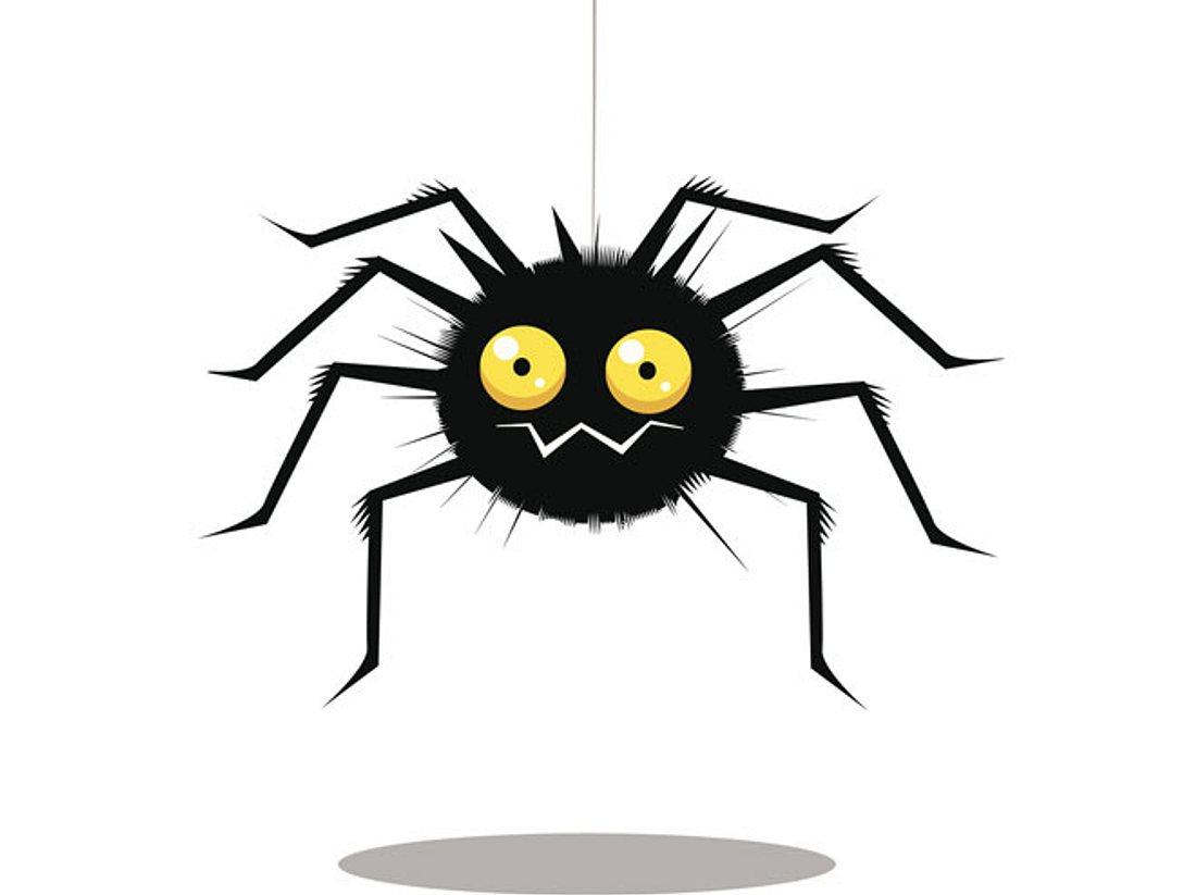 Anstatt Spinnen zu töten, können Sie sie zum Beispiel mit einem Spinnenfänger entfernen.