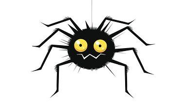 Anstatt Spinnen zu töten, können Sie sie zum Beispiel mit einem Spinnenfänger entfernen. - Foto: vabadov / iStock