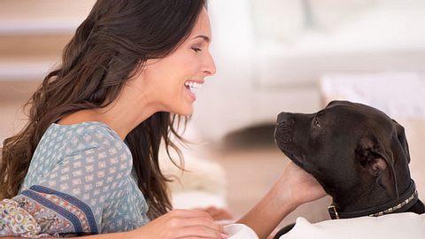 Manchen mag es vielleicht kindisch vorkommen, wenn Haustierbesitzer mit Hund und Katze sprechen - doch Experten sagen, dass dieses Verhalten sogar ein Zeichen von Intelligenz ist. - Foto: Yuri_Arcurs / iStock